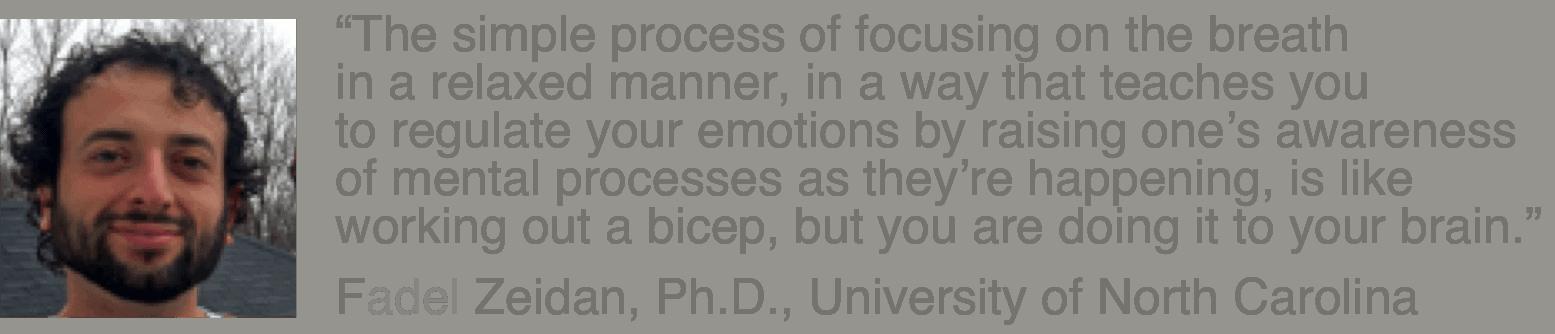 Fadel Zeidan, Ph.D.